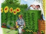 Funny Gardening Birthday Cards Gardening Greeting Card the Hedge Cutter