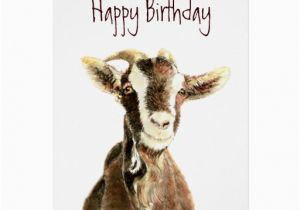 Funny Goat Birthday Cards Funny Birthday From the Old Goat who Loves You Card Zazzle