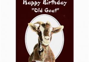 Funny Goat Birthday Cards Funny Birthday Over the Hill Old Goat Humour Greeting Card