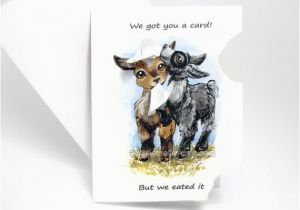 Funny Goat Birthday Cards Funny Card Cute Goat Art Hungry Baby Goats Thinking Of You