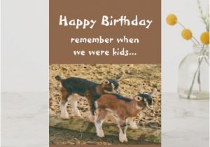 Funny Goat Birthday Cards Funny Goat Banquet Birthday Card Zazzle Co Uk