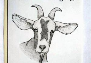 Funny Goat Birthday Cards Funny Goat Birthday Card original Pencil Drawing Your