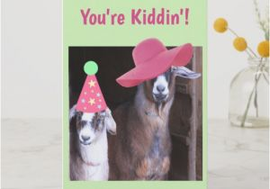 Funny Goat Birthday Cards Old Goat Gifts Gift Ideas Zazzle Uk