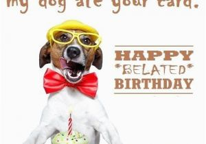 Funny Happy Belated Birthday Quotes Funny Belated Birthday Wishes Happy Birthday Quotes and