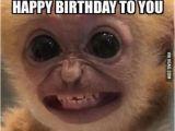 Funny Happy Birthday Memes for Guys 8 Happy Birthday My Beautiful Friend