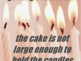 Funny Happy Birthday Pics and Quotes Funny Birthday Quotes Quotes Words Sayings