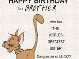Funny Happy Birthday Quotes for Little Brother 200 Best Birthday Wishes for Brother 2019 My Happy