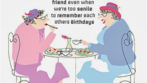 Funny Happy Birthday Quotes to A Friend 25 Funny Birthday Wishes and Greetings for You