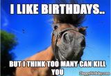 Funny Horse Birthday Memes Funny Happy Birthday Horse Meme Birthday Cookies Cake