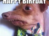 Funny Rude Birthday Meme Happy Birthday Meme Rude Pictures Really Funny Pictures