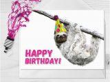 Funny Sloth Birthday Card Birthday Sloth Sloth Card Sloths Smiling Sloth
