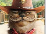 Funny Texas Birthday Cards Sheriff Cat with Mustache Stand Out Pop Up Birthday Card