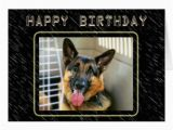 German Shepherd Birthday Cards German Shepherd Birthday Card Zazzle
