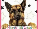 German Shepherd Birthday Cards Happy Birthday Wishes with German Shepherd