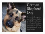 German Shepherd Birthday Cards the Gallery for Gt Happy Birthday German Shepherd