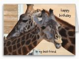 Giraffe Birthday Card Sayings 1000 Images About Happy Birthday Baby On Pinterest