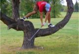 Golf Birthday Meme Goin 39 Out On A Limb to Wish You A Happy Birthday Bad
