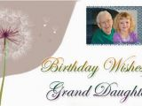 Granddaughter Birthday Cards for Facebook Granddaughter Birthday Wishes Grand Daughter Messages