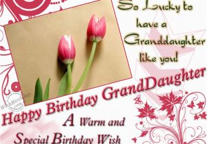 Granddaughter Birthday Cards For Facebook Special Wishes Wishbirthday Com