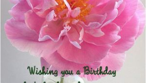 Greeting Cards for Birthday Wishes to Friend Happy Birthday Wishes for Friend with Images