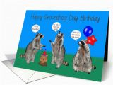Groundhog Day Birthday Card Birthday On Groundhog Day General Raccoons with 755040