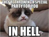 Grumpy Cat Birthday Meme Generator 1207 Best Gt
