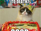 Grumpy Cat Birthday Meme Generator 205 Best Images About Happy Birthday On Pinterest