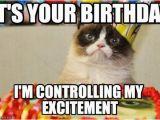 Grumpy Cat Birthday Meme Generator 65 Best Images About Birthday Memes On Pinterest 50
