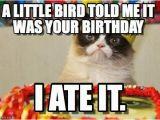 Grumpy Cat Birthday Meme Generator Happy Birthday From Grumpy Cat Happy Birthday Grumpy Cat