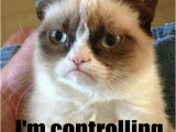 Grumpy Cat Birthday Meme Generator Sad Birthday Cat Meme Generator Image Memes at Relatably Com
