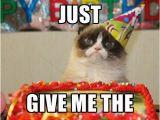 Grumpy Cat Birthday Meme Generator the 25 Best Birthday Meme Generator Ideas On Pinterest