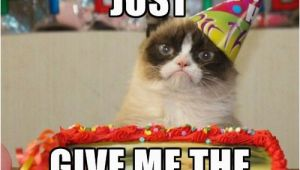 Grumpy Cat Birthday Meme Generator the 25 Best Birthday Meme Generator Ideas On Pinterest