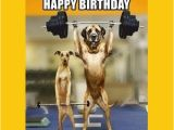 Gym Birthday Meme Birthday Work Out Memes Wishesgreeting