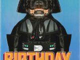 Hallmark Star Wars Birthday Cards Star Wars Darth Vader Dog Birthday Card Greeting Cards