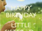 Happy 21st Birthday Little Sister Quotes Happy Birthday Little Sister Quotes Quotesgram