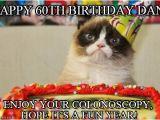 Happy 60th Birthday Memes Happy 60th Birthday Dan Grumpy Cat Birthday Meme On Memegen