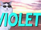 Happy Birthday Banner Printable Violet Happy Birthday Violet Epic Cat Happy Birthday song