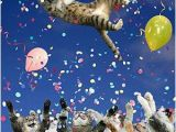 Happy Birthday Banners Nz Feliz Ano Nuevo 2011 Gatitos Adorables