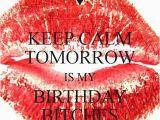 Happy Birthday Bitch Quotes Birthday Bitch Quotes Quotesgram