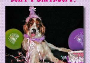 Happy Birthday Cards Dog Lovers Birthday Cards for Dog Lovers