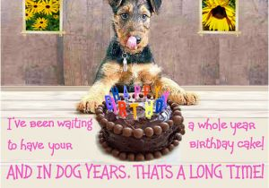 Happy Birthday Cards Dog Lovers Birthday Quotes for Dog Lovers Quotesgram