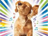 Happy Birthday Cards Dog Lovers Cocker Spaniel Puppy Music Luxury Glitter Birthday