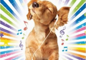 Happy Birthday Cards Dog Lovers Cocker Spaniel Puppy Music Luxury Glitter Birthday