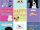 Happy Birthday Cards Dog Lovers Dogs Trust Charity Greeting Birthday Card by Waggy Tails