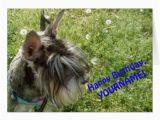 Happy Birthday Cards Dog Lovers Schnauzer Dog Lover Greeting Card Happy Birthday Zazzle
