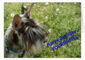 Happy Birthday Cards Dog Lovers Schnauzer Dog Lover Greeting Card Happy Birthday Zazzle