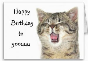 Happy Birthday Cards with Cats 17 Best Images About Cat Birthday Cards On Pinterest