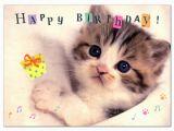 Happy Birthday Cards with Cats ashiya Hori Mansho Do Rakuten Global Market Birthday