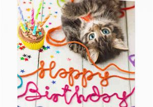 Happy Birthday Cards with Cats Happy Birthday Wishes with Cat Page 3