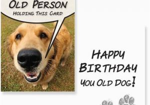 Happy Birthday Cards With Dogs Wishes For A Dog Lover Wishesgreeting